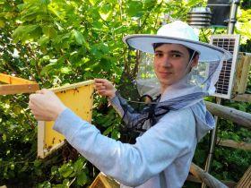 Včelaření pro mírně pokročilé