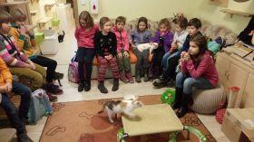 Máme rádi zvířata - 4
