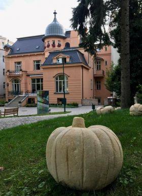 výstava na zahradě Vily Löw-Beer
